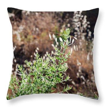 Garden Contre Jour 2 Throw Pillow