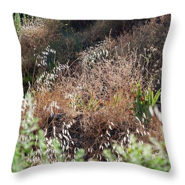 Garden Contre Jour Throw Pillow