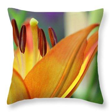 Garden Delight Throw Pillow by Deborah  Crew-Johnson