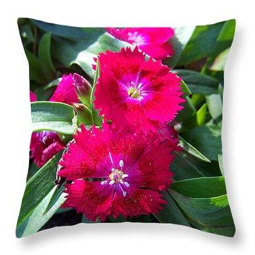 Throw Pillow featuring the photograph Garden Delight by Sandi OReilly