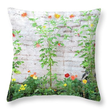 Garden Florals Throw Pillow by Carolyn Dalessandro