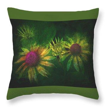 Throw Pillow featuring the photograph Garden Flowers 2 June 14 2015 by Jim Vance