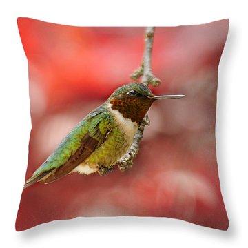 Throw Pillow featuring the photograph Garden Gem by Lara Ellis