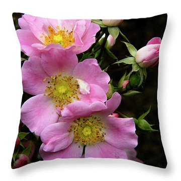 Throw Pillow featuring the photograph Garden Glory by Michael Friedman