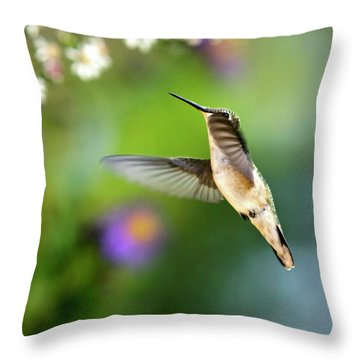 Garden Hummingbird Throw Pillow by Christina Rollo