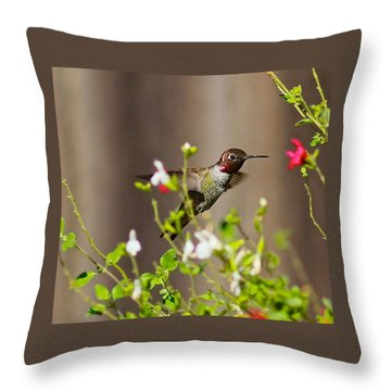 Garden Hummingbird Throw Pillow