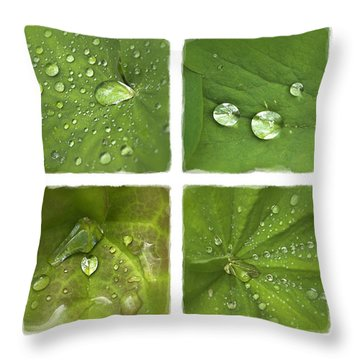 Garden Jewels Throw Pillow
