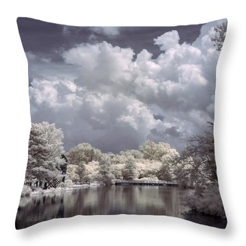 Garden Lake In Infrared Throw Pillow
