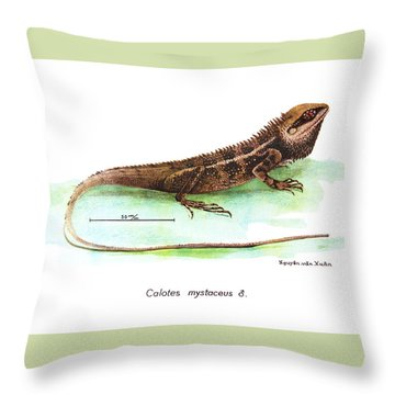 Throw Pillow featuring the drawing Garden Lizard by Nguyen van Xuan