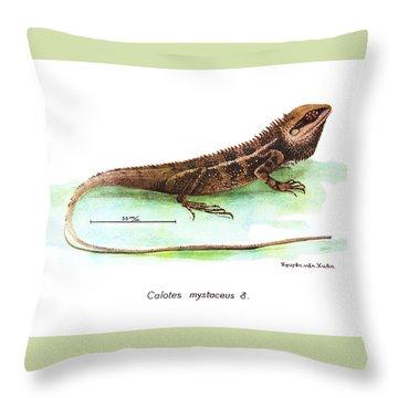 Garden Lizard Throw Pillow
