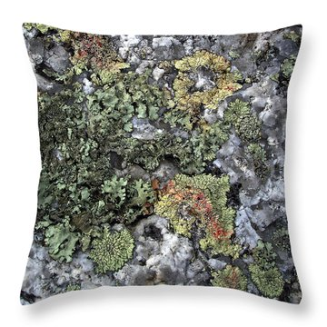 Throw Pillow featuring the photograph Garden Of Lichen And Granite by Lynda Lehmann