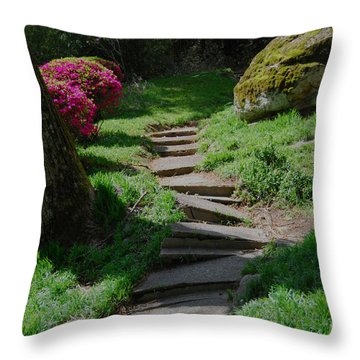 Garden Path Throw Pillow by Linda Mesibov