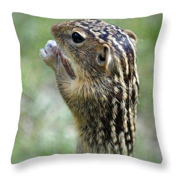 Garden Pest Throw Pillow