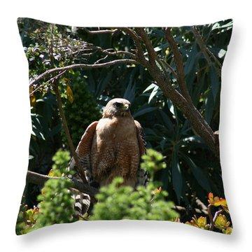 Garden Rest Throw Pillow