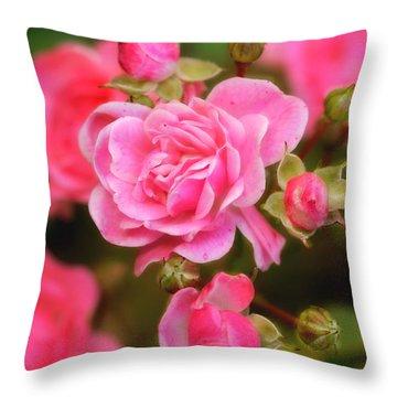 Throw Pillow featuring the photograph Garden Rose by Alana Ranney