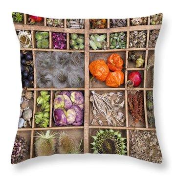Garden Seed Pods Throw Pillow