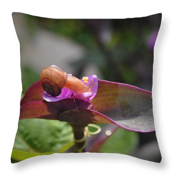Throw Pillow featuring the photograph Garden Snails Wandering by Kate Word
