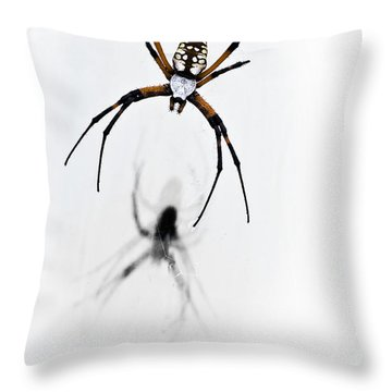 Garden Spider With Shadow Throw Pillow by Tamyra Ayles