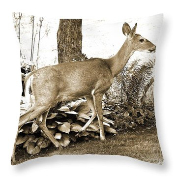 Throw Pillow featuring the photograph Garden Visitor by Betsy Zimmerli