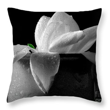 Gardenia In Coffee Cup Throw Pillow