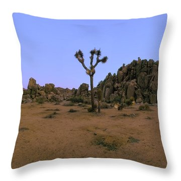 Gargoyle Rock Area Pano View Throw Pillow