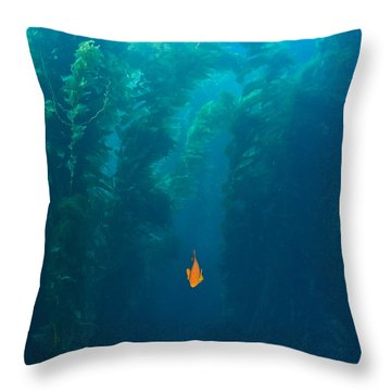Garibaldi Fish In Giant Kelp Underwater Throw Pillow by James Forte