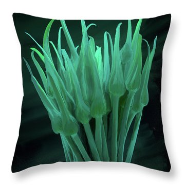 Garlic Scapes 01 Throw Pillow by Wally Hampton