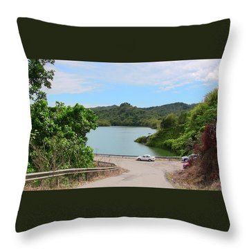 Garzas Lake Road Throw Pillow