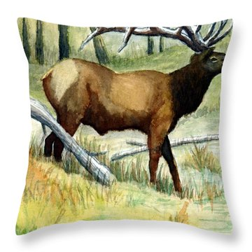 Gash Flats Bull Throw Pillow by Jimmy Smith