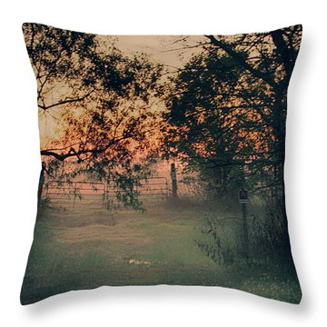 Throw Pillow featuring the photograph Gated Sunset by Charles McKelroy