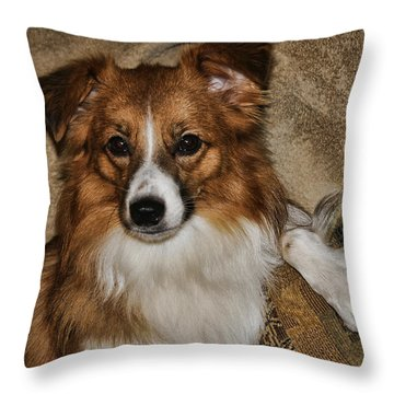 Gater Attention Throw Pillow