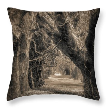 Throw Pillow featuring the photograph Gateway Through An Avenue Of Live Oaks by Chris Bordeleau
