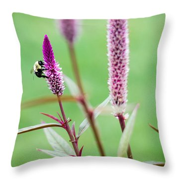 Gathering For The Family Throw Pillow