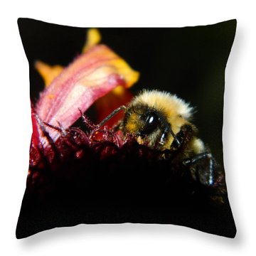 Gathering Throw Pillow