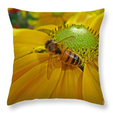 Gathering Nectar Throw Pillow