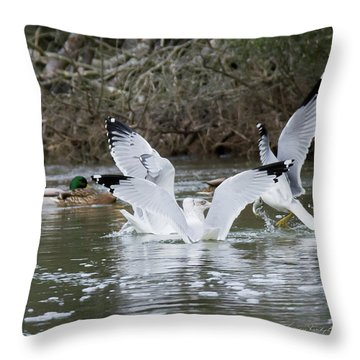 Gathering Of Egrets Throw Pillow