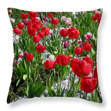 Gathering Of Joy Throw Pillow