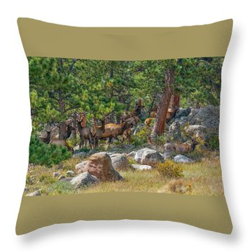 Gathering Of The Herd Throw Pillow