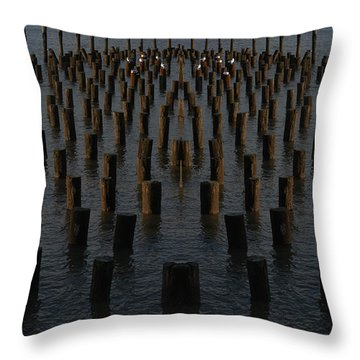 Gathering On The Hudson Throw Pillow