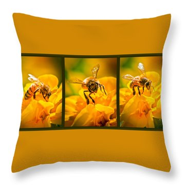 Gathering Pollen Triptych Throw Pillow by Bob Orsillo