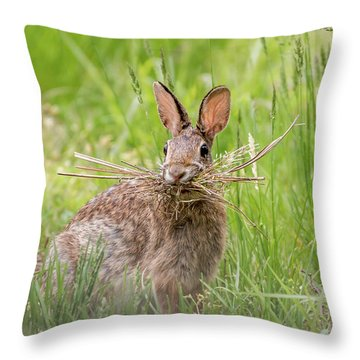 Gathering Rabbit Throw Pillow by Terry DeLuco