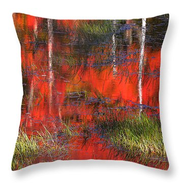 Gatineau Marsh Fall Colors Throw Pillow
