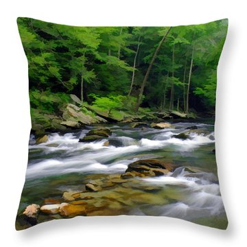 Gatlinburg Stream Throw Pillow