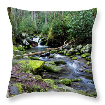 Gatlinburg Water Throw Pillow