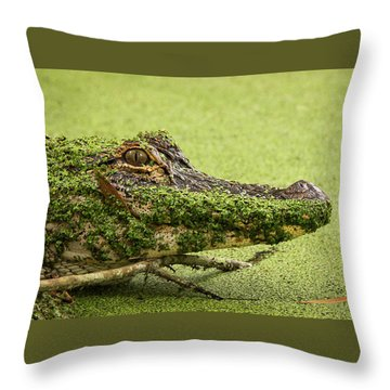 Gator Camo Throw Pillow