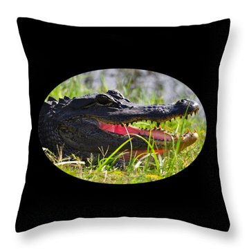 Throw Pillow featuring the photograph Gator Grin .png by Al Powell Photography USA