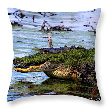 Throw Pillow featuring the photograph Gator Growl by Barbara Bowen