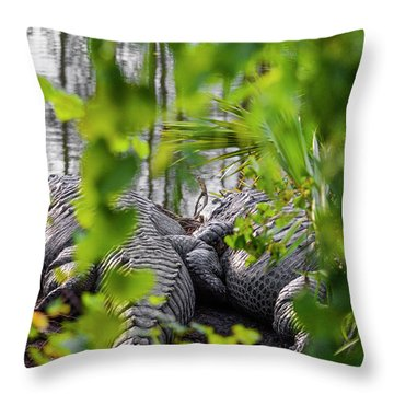 Gator Love Throw Pillow
