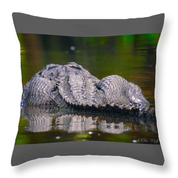 Gator On Ninja Cam Throw Pillow