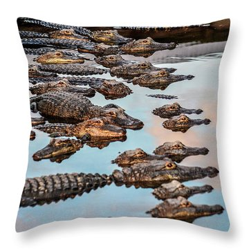 Gator Pack Throw Pillow